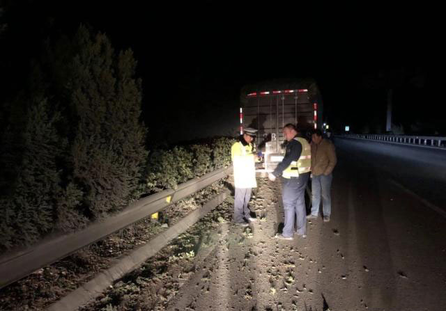 The truck hit the highway fencing guardrail
